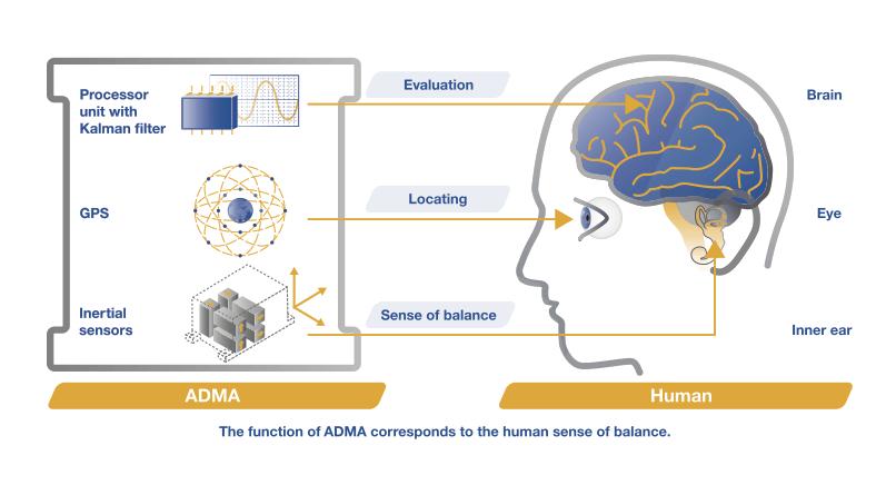 ADMA-HUMAN